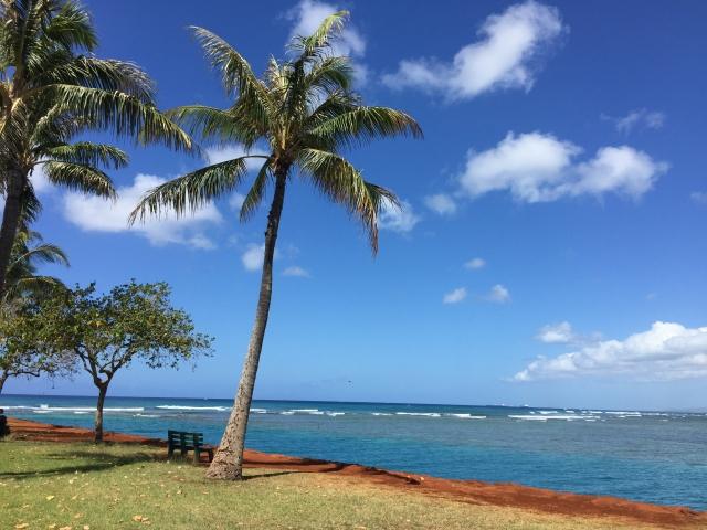 ハワイ,挙式,海外挙式